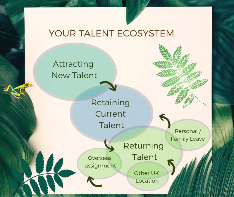 Your Talent Ecosystem: Part 2. Retaining – Hanging on to the Talent you need